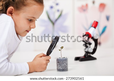 Young girl study a plant growing in plastic recipient - science class in elementary school - stock photo