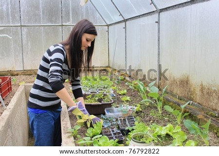 Young girl working in the greenhous - stock photo