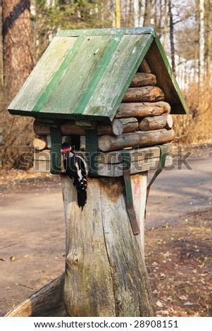 Young greater spotted woodpecker on birdfeeder in park - stock photo