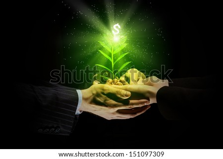 Young green sprout in human hands. Money concept - stock photo
