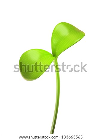 young green sprout isolated on white background - stock photo