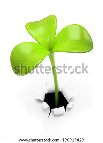 Young green three leaf sprout 3D - stock photo