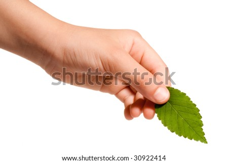 young hand holding a green leaf - stock photo