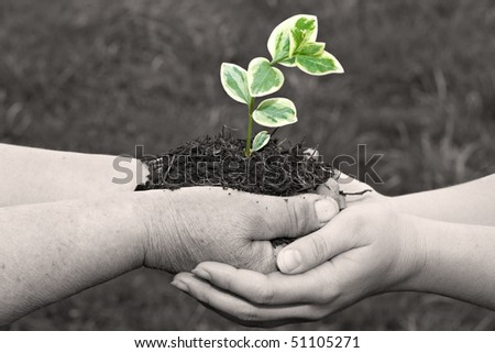 Young hand support senior. - stock photo