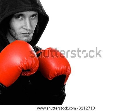 Young handsome boxer - stock photo