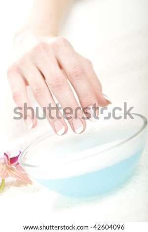 Young healthy beautiful hands with white skin and perfect wet french manicure. bowl and flower as decoration - stock photo