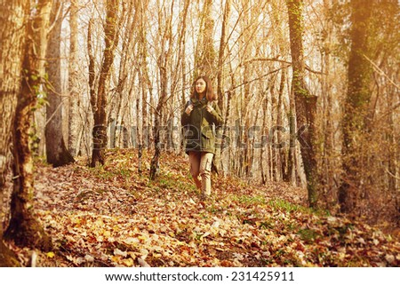 Young hiker woman with backpack walking in autumn forest, dry yellow leaves on land. Hiking and leisure theme. Image with sunlight effect