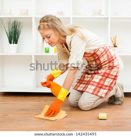 Young housewife is cleaning,It`s time for cleaning - stock photo