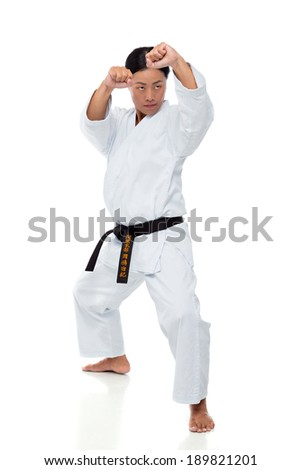 Young Japanese woman training karate isolated on white background - stock photo