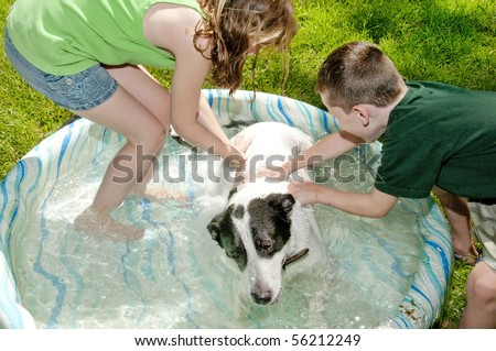 Young kids washing dog in kiddie pool - stock photo