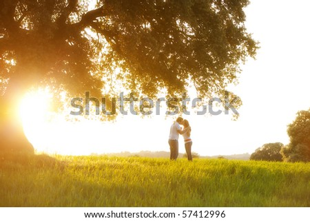 Young kissing couple under huge tree at sunset - stock photo