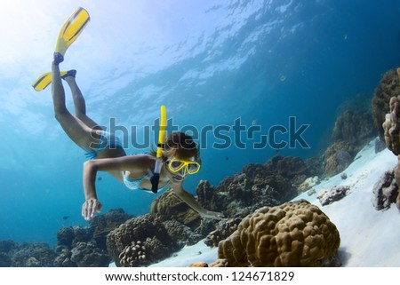 Young lady snorkeling in a tropical sea with yellow fins - stock photo