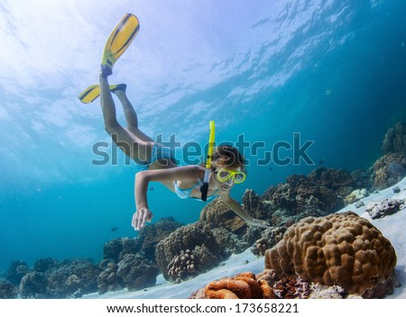 Young lady snorkeling over coral reefs in a tropical sea - stock photo