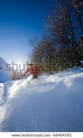 Young male freeride skier goes down in powder snow. Backlight, vertical frame, rear view, snowy woods, red jacket. - stock photo