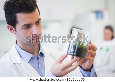 Young male researcher looking at young plant at the laboratory - stock photo