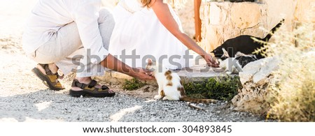 young man and woman feeding  cats in a park - stock photo