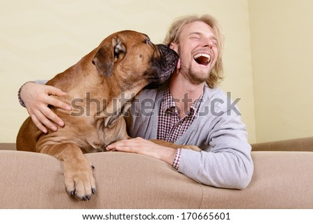 young man at home playing with a big bullmastiff dog. positively laugh - stock photo