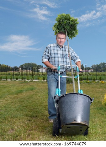 Young man carrying potted oak tree using hand truck to be planted in his garden - stock photo