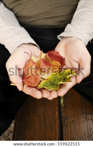 Young man holding dry leaves