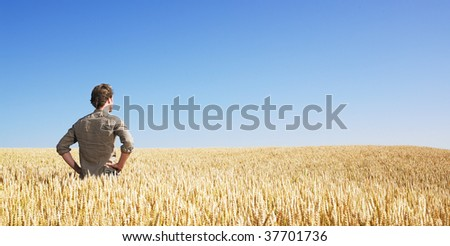 Young man in wheat field - stock photo