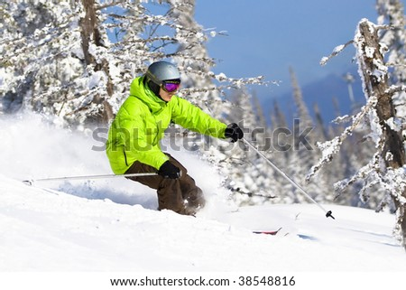 Young man on skis riding between trees in powder snow. Free ride