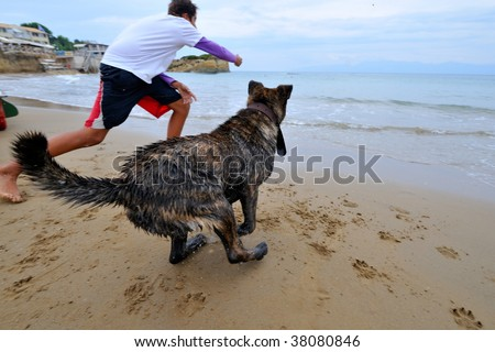 young man playing with his dog on the beach - stock photo