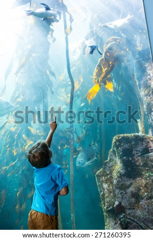 Young man pointing a penguins in an illuminate tank at the aquarium - stock photo