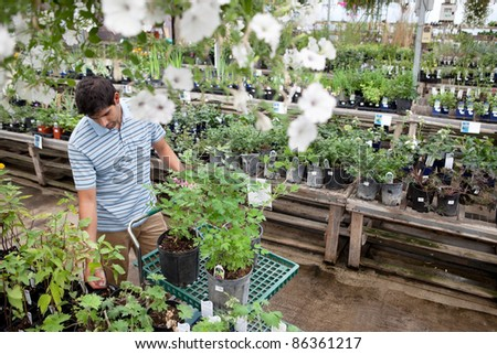 Young man standing with potted plants on cart