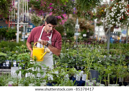 Young man watering plants in greenhouse - stock photo