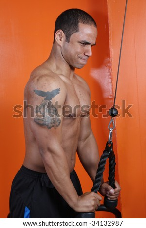 Young man working out at the gym, working on arms