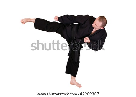 Young Martial artist with his high side kick