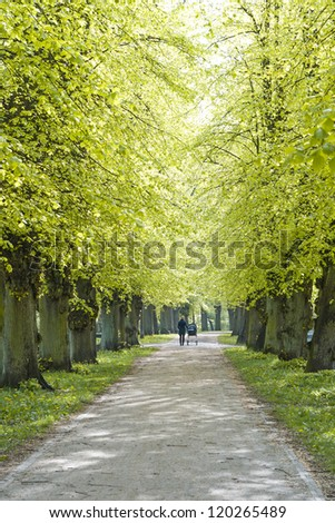 young Mother with Child walking under Linden Trees - stock photo