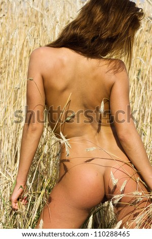 Young naked woman of rye. Nude girl in the field. - stock photo