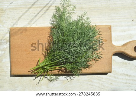 young, natural, organic fennel on a kitchen board - stock photo