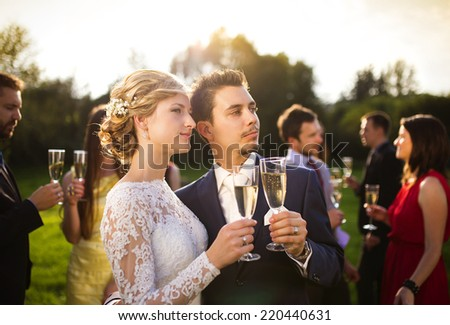 Young newlyweds clinking glasses and enjoying romantic moment together at wedding reception outside - stock photo