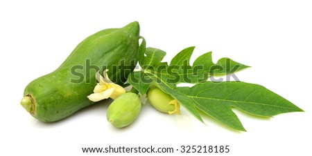 young papaya fruit with leaves isolated on white background