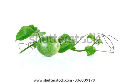 Young passion fruit isolated on white background - stock photo