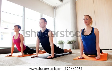 Young people holding up dog pose in a yoga class - stock photo