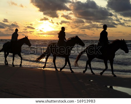 Young people riding up the coast. Baltic sea.