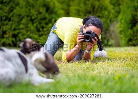 Young photographer taking a photo of playing dogs - stock photo