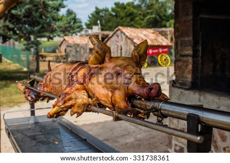 young pig on the spig grilled on open fire - stock photo