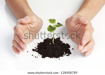 young plant cover their hands on a white background - stock photo