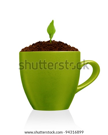 Young plant growing in green mug, isolated on the white backgrounds - stock photo