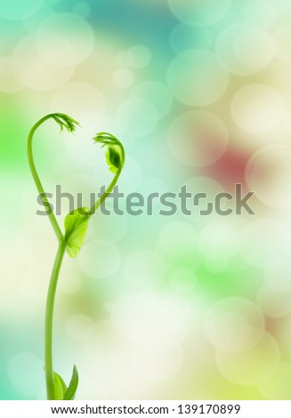 Young plant  sprout on green background - stock photo
