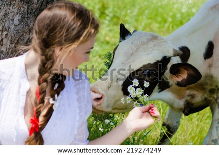 Young pretty woman feeding cow calf outdoors on bright summer day - stock photo