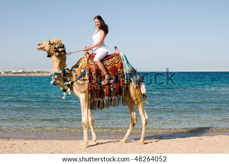 young pretty woman on camel