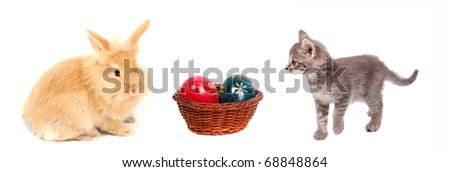 young rabbit and cat with easter eggs - stock photo
