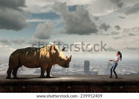 Young scared woman holding rhino on rope - stock photo