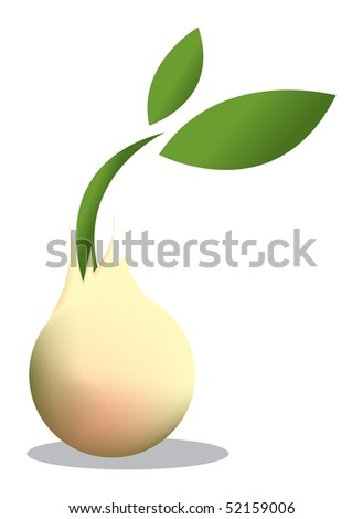 Young Seed - stock photo