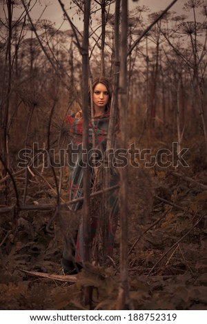 Young sexy woman posing in thickets - stock photo